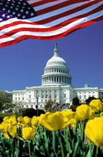 Бизнес план сайта > Пример бизнес плана сайта по продаже  Недвижимость в США Бизнес план создания сайта по продаже недвижимости в США